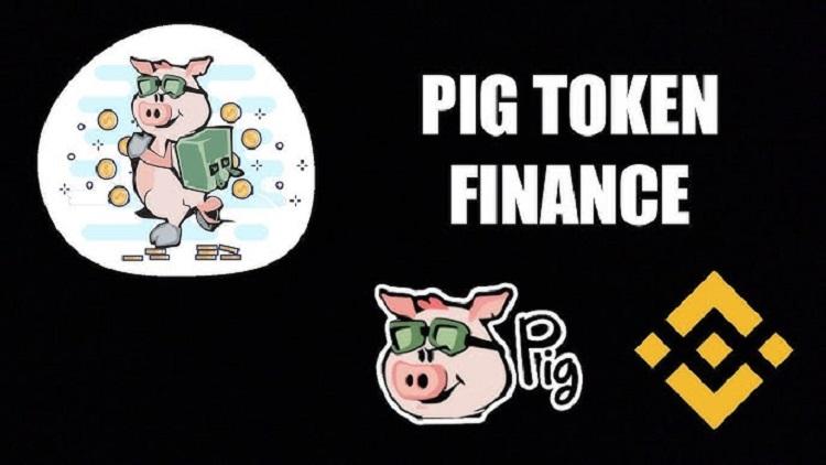 Pig  Token Smart Contract Audit