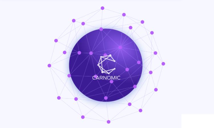 CarNomic Token Smart Contract Audit